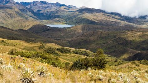 Chingaza Natural Park, Colombia