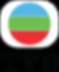 home threapy_tvb logo.png