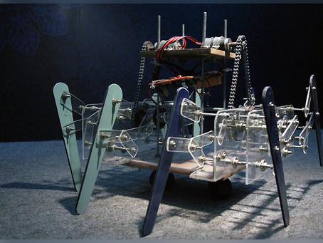 Walking Mechanism of a Robot