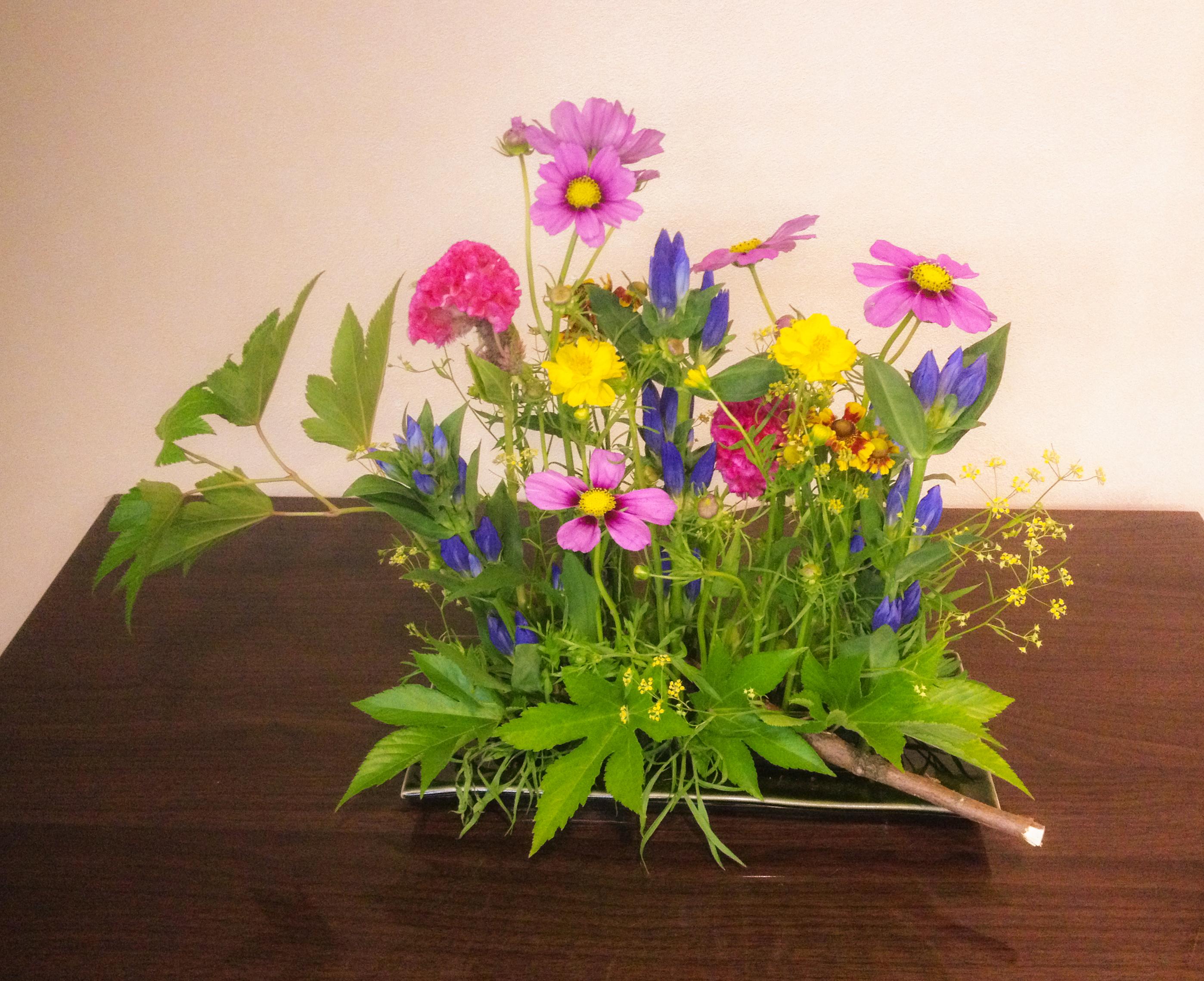 Little garden arrangement