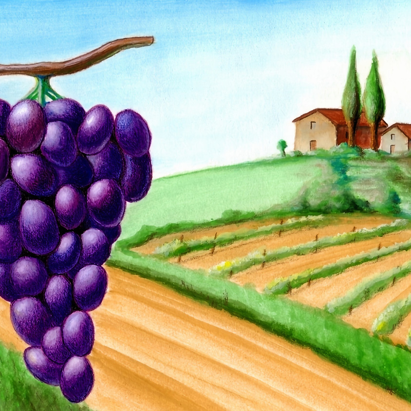 Wine Harvest Festivals - 1 Hour French FALL Cultural Event