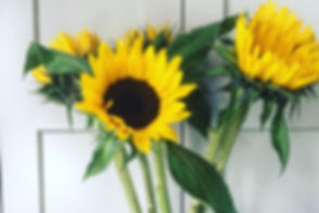 Sunflowers_edited.jpg