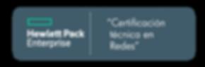 Certificación Técnica en Redes