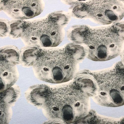 Koala Leggings