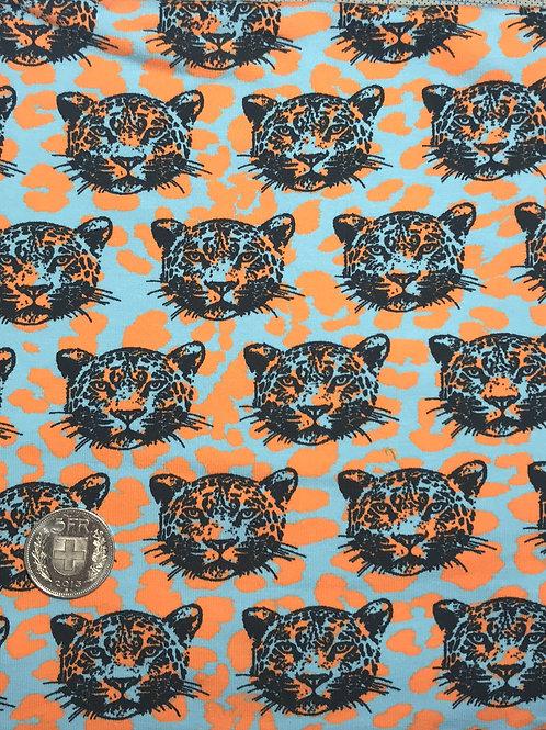 Leopards Jersey