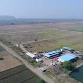 farm pond view (4).jpg