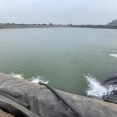farm pond view (3).jpg
