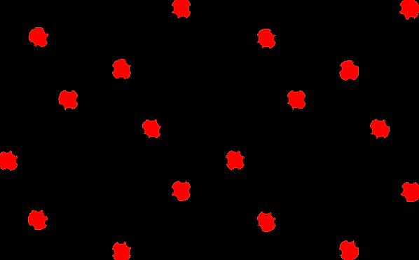 lattice.png