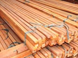 ripas-madeira-01