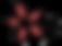 logo bloem kleur.png