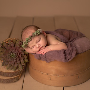 Eliza Daphne újszülött sorozata