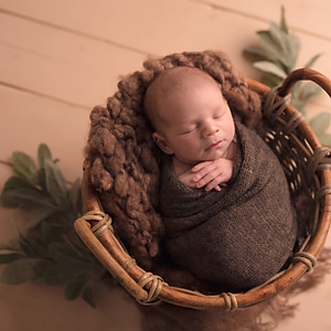 Dávid újszülött sorozata