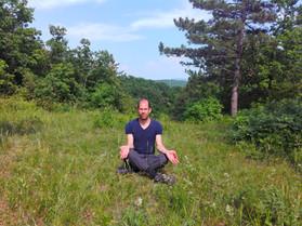 meidtáció KEszthelyi hegység, erdő