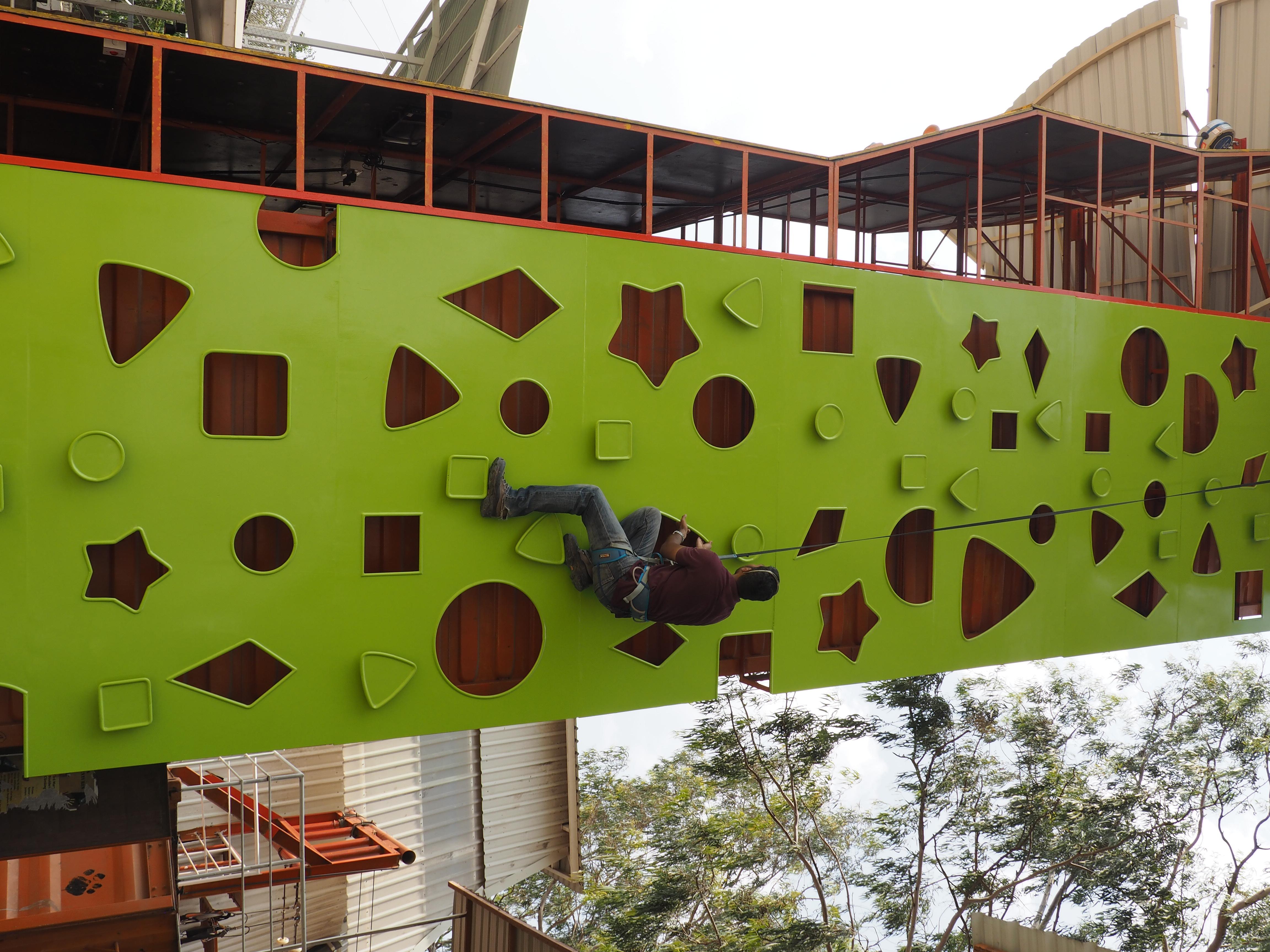 Geometree Theme Wall