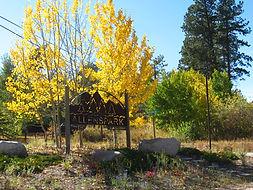 Allenspark CO | Creekside Cabins of Colorado