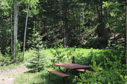 Riverside picnic area