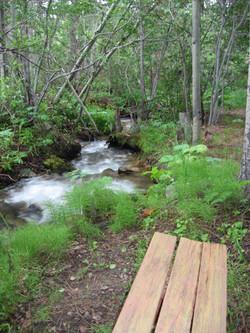 Cascading Creek