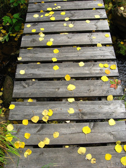 Bunger's Bridge in the Fall