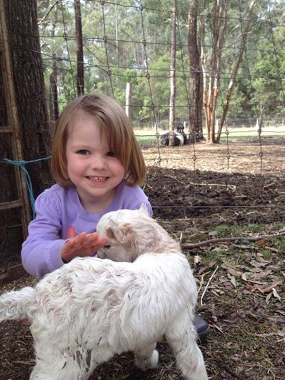 Farmstay fun near Port Macquarie
