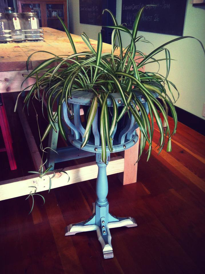 plant stand.jpg