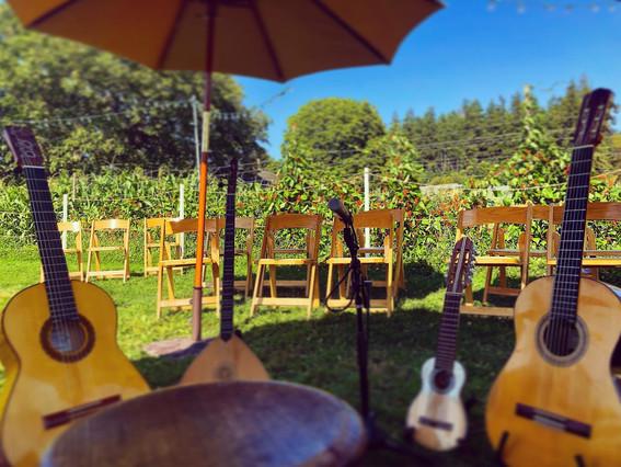 Vineyard Concert