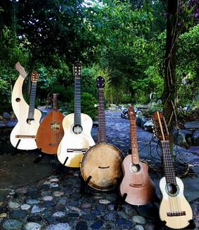 Garden Variety Instruments