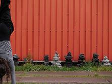 20200927_Rotterdam_Movement_1050342.JPG