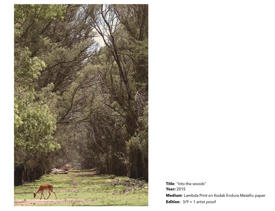 Captura de Pantalla 2020-03-11 a la(s) 1