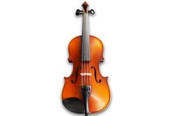 Sergio Tordini Violin Gloss