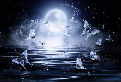 moon-full-butterfly-black-night-public-d