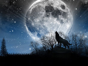 Wolf and huge moon.jpg