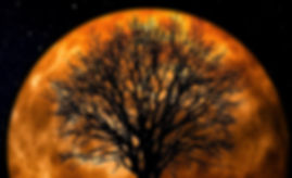 Big orange moon , tree and people_edited