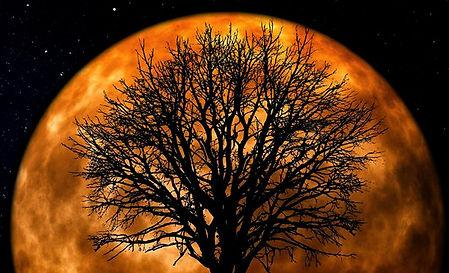Big orange moon , tree and people_edited
