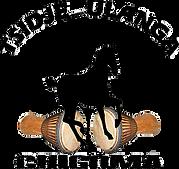tsidjé-ulanga logo.png