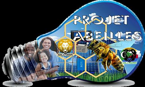 Projet Abeilles 4.png