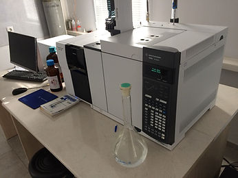 Georgia lab.jpg