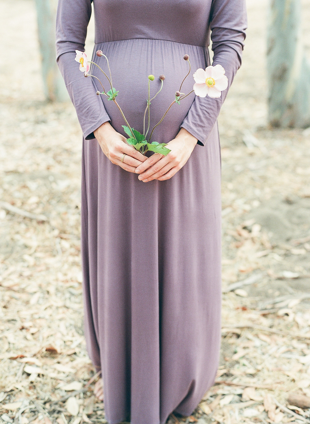 Photo of baby bump with woman holding flowers in front of belly