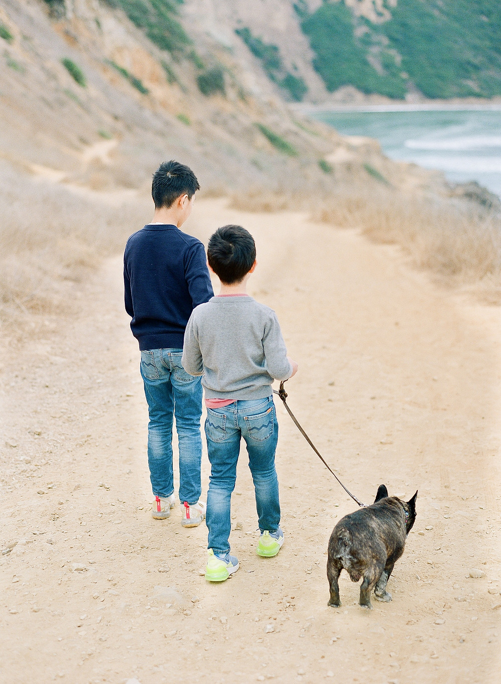 Family photos in Palos Verdes California with french bulldog