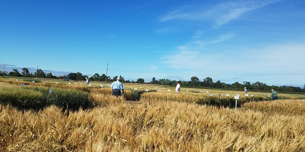 2018 California Wheat Collaborator Meeting