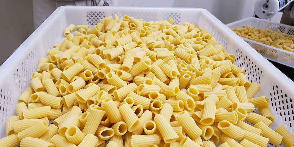 Durum and Pasta Quality Course - Session 1