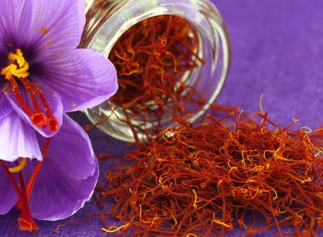 Saffron's Botanical Name:Crocus Sativus