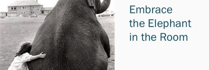 Embrace the elephant