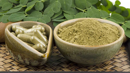 Moringa Capsules and Powder
