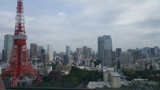 Booking Your Trip To Tokyo - The Basics