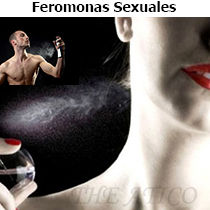 feromonas sexuales masculinas, feromonas sexuales femeninas, feromonas afrodisiacas, atraer hombres, atraer mujeres, conquistar hombres, conquistar mujeres, pasion sex, perfume con feromonas, sex shop, extasy, buttman, kisme, digital69, sex shop argentino