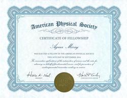 Honored as APS Fellow