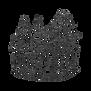 panda2018_logotransparent.png