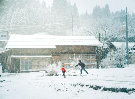 また、雪が降った