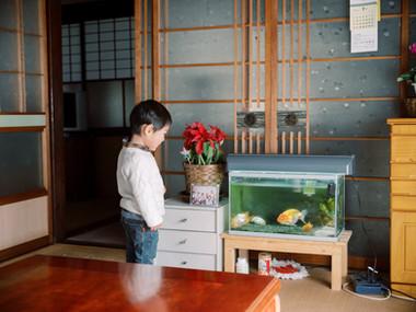 岐阜-郡上-カメラマン-子どもの写真-出張撮影-フィルム-リピート