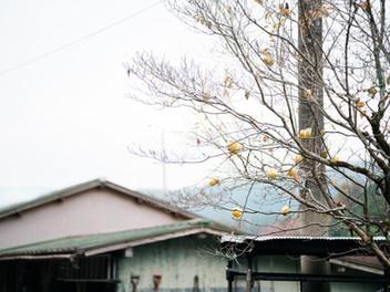 岐阜-郡上市-カメラマン-ライフスタイルフォト-出張撮影